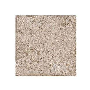 Individual alpstone taupe wall tile.